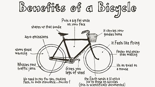 Benefits of cycling in Amsterdam