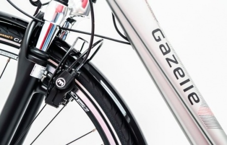 Rent an E-Bike with suspension fork and hand brakes